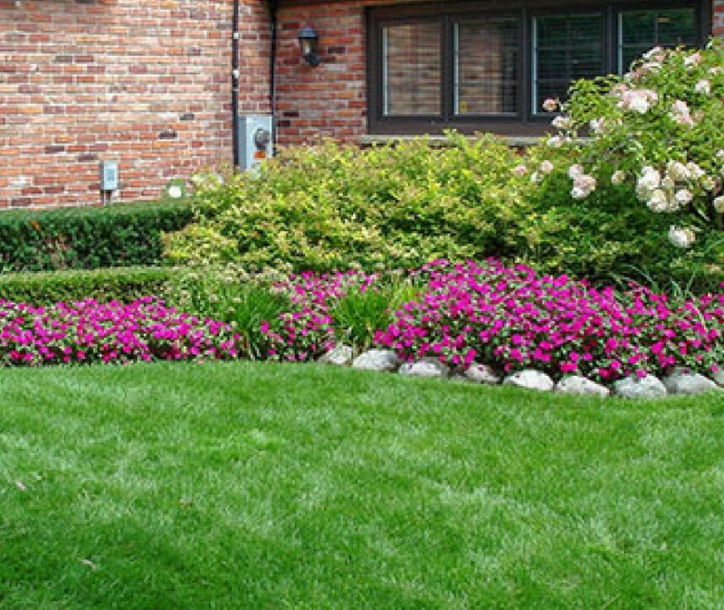 Mowing Trimming Lawn Maintenance by Thompson Brothers Landscaping