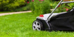 Seasonal Lawn Care by Thompson Brothers Landscaping