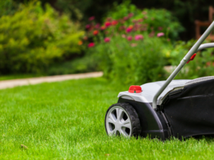 Annual Lawncare and Maintenance by Thomson Brothers Landscaping