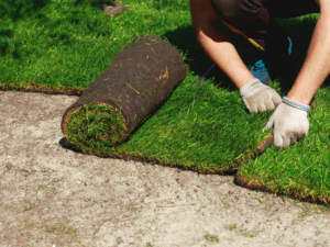 Affordable Rates for Commercial and Residential Sod Installation