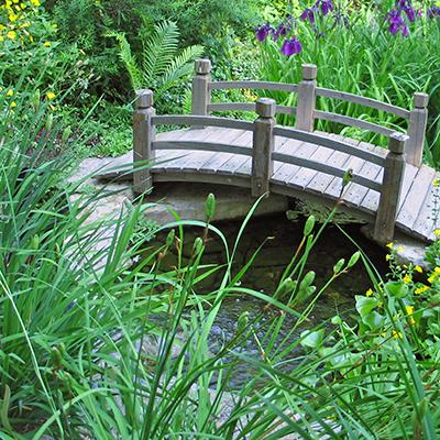 Need Water Garden Design U0026 Installation?
